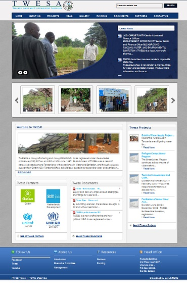 Professional website for non profit organization